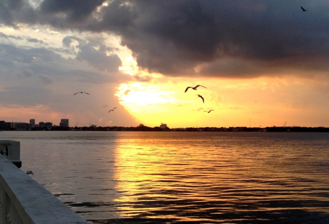 Sunrise On Tampa Bay, 2014