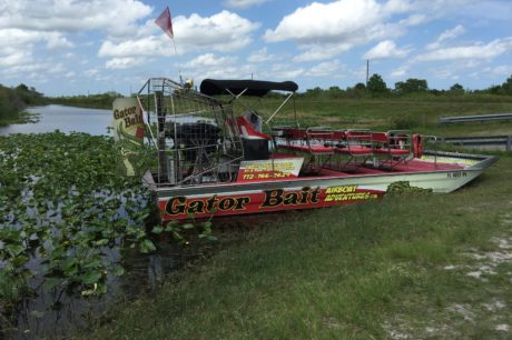 Weekend-Recharge-Unplug-From-Media-Noise-With-Gator-Bait-Airboat-Adventure-1.jpeg